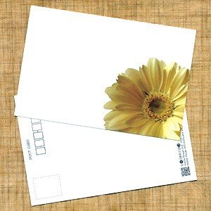 花のポストカード ガーベラ(黄色、インクジェット紙) horiya-studio