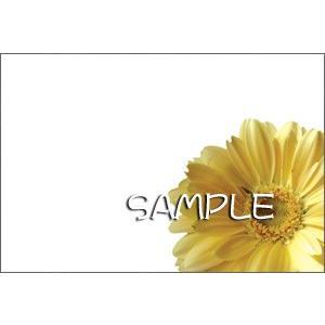 花のポストカード ガーベラ(黄色、インクジェット紙) horiya-studio 02