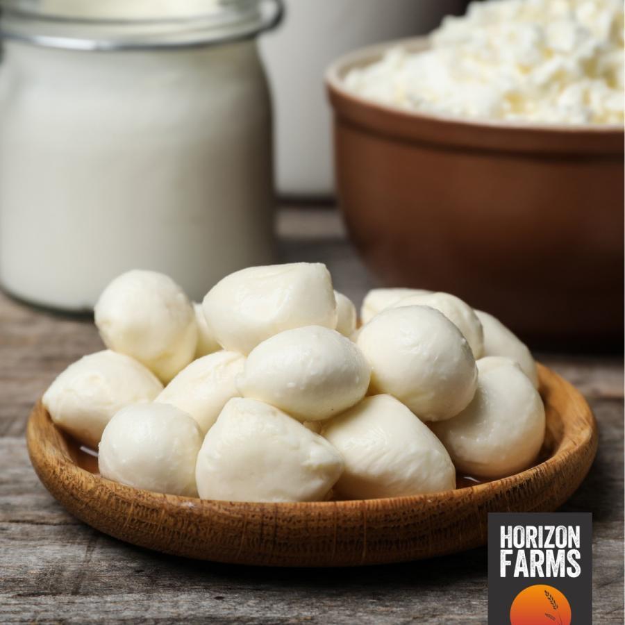 イタリア産 モッツァレラ チーズ 一口 ミニ サイズ  1kg 無添加 冷凍 ナチュラルチーズ 業務用 おつまみ horizonfarms