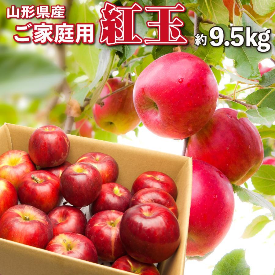 紅玉 りんご 訳あり 9.5キロ 送料無料 ご家庭用 山形県産 産地直送 林檎 リンゴ 9.5kg【沖縄、離島発送不可】|hoshino-ichiba