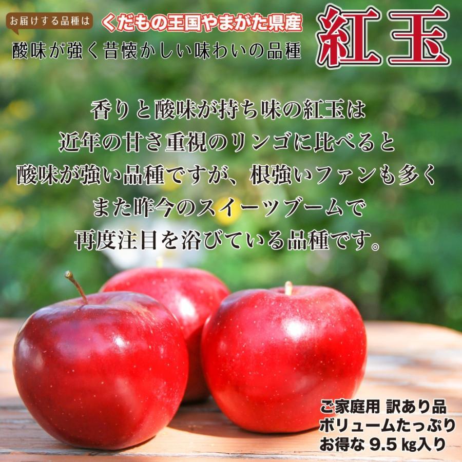 紅玉 りんご 訳あり 9.5キロ 送料無料 ご家庭用 山形県産 産地直送 林檎 リンゴ 9.5kg【沖縄、離島発送不可】|hoshino-ichiba|04