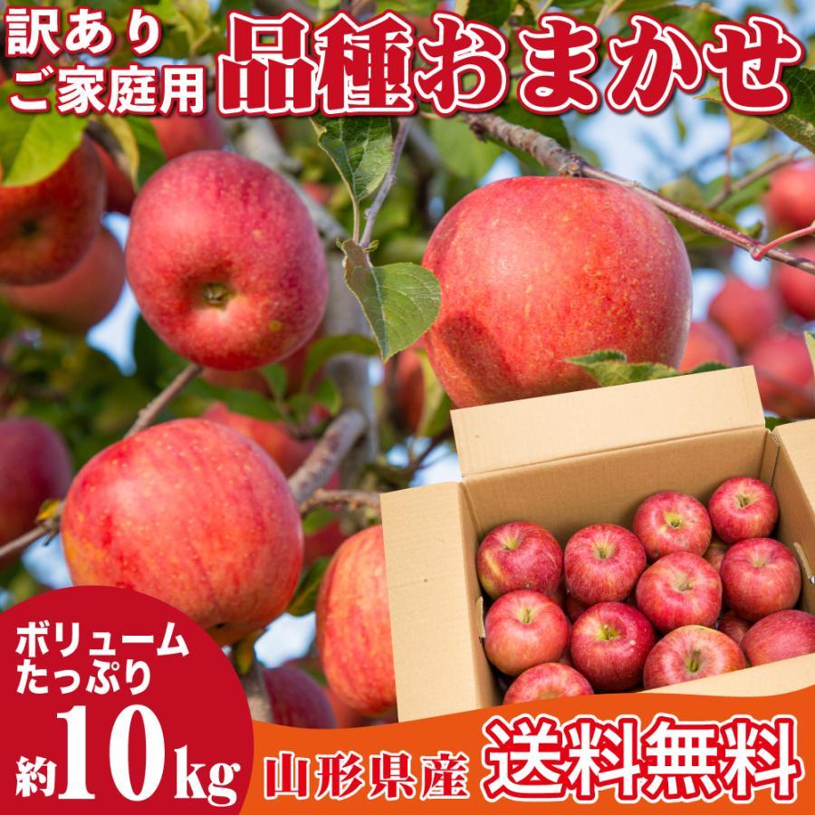 りんご 訳あり 品種おまかせ 約10キロ 山形県産 ご家庭用 産地直送  林檎 リンゴ 10kg【沖縄、離島発送不可】|hoshino-ichiba