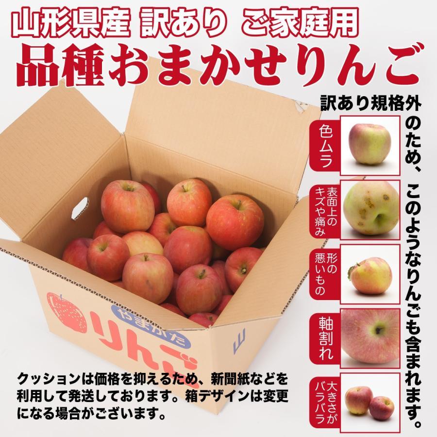りんご 訳あり 品種おまかせ 約10キロ 山形県産 ご家庭用 産地直送  林檎 リンゴ 10kg【沖縄、離島発送不可】|hoshino-ichiba|02