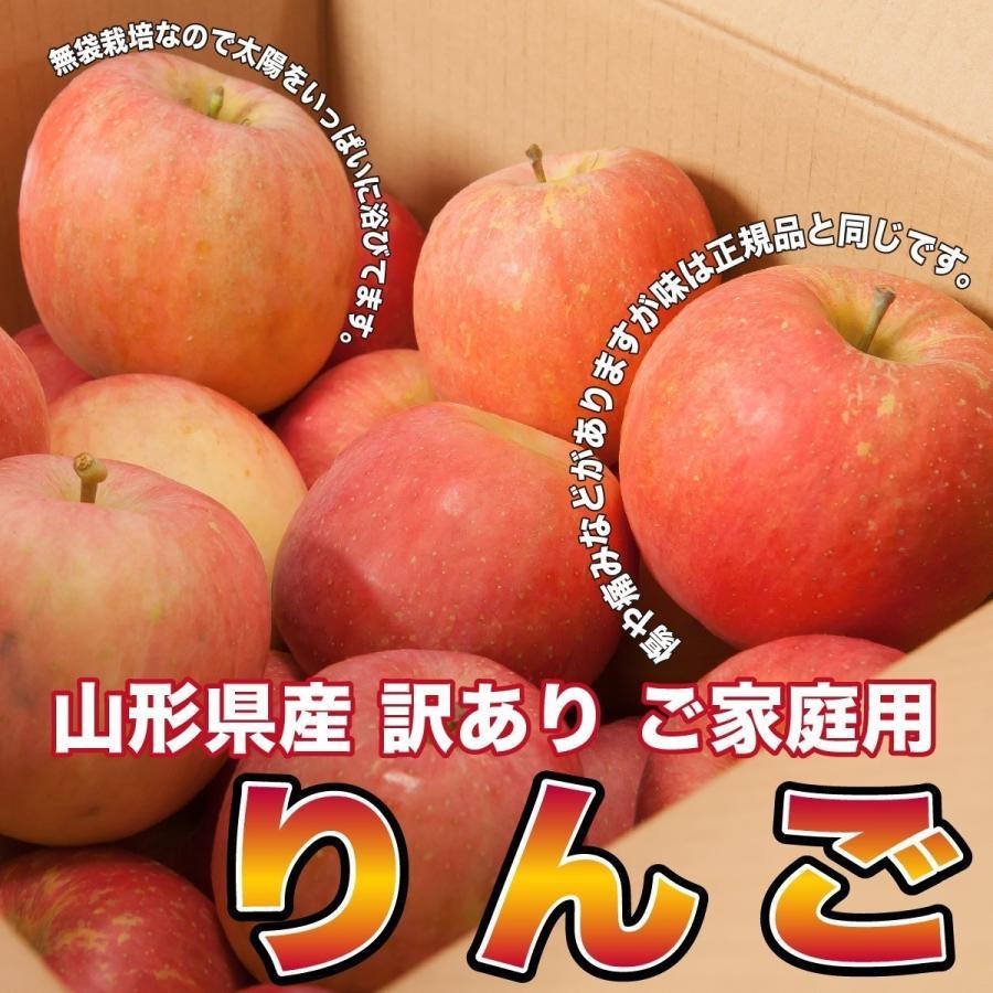 りんご 訳あり 品種おまかせ 約10キロ 山形県産 ご家庭用 産地直送  林檎 リンゴ 10kg【沖縄、離島発送不可】|hoshino-ichiba|03