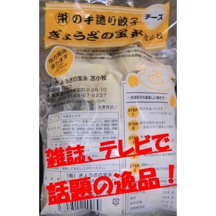 【品切れ中、入荷待ち】宝永のチーズぎょうざ 375g入(約15個入)話題沸騰 今までにない味|houeisapporo