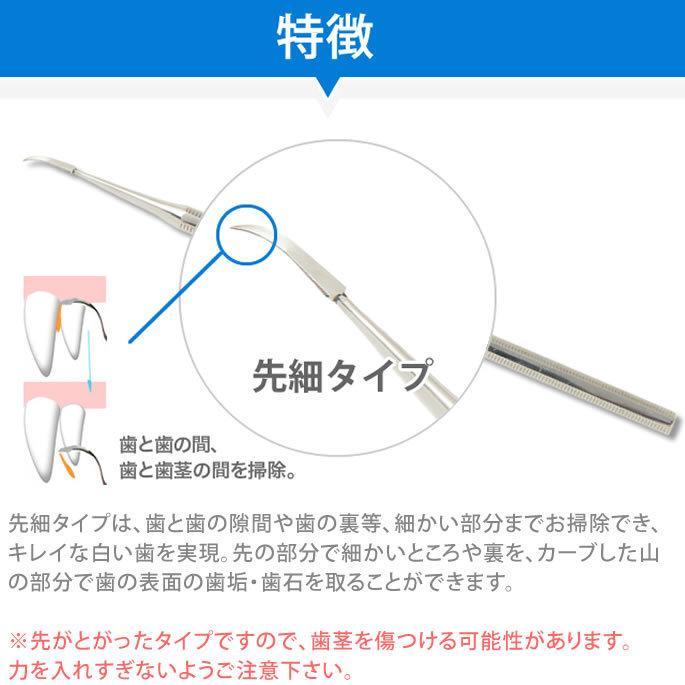 歯石 取り 犬