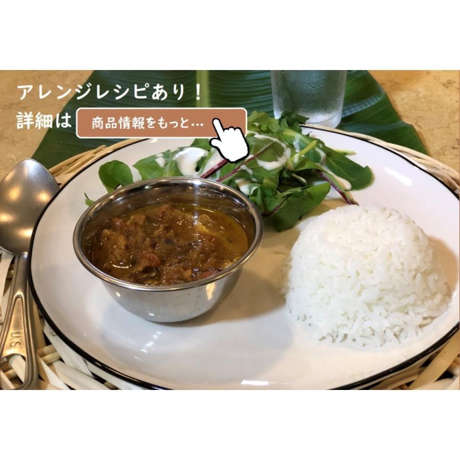 スパイスカレー!簡単に作れるカレースパイスベースセット(3〜4人分)レシピ付|housesokinawa|03