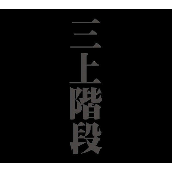 三上階段(三上寛/非常階段) / LIVE IN KOCHI CHAOTIC NOISE hoyhoy-records