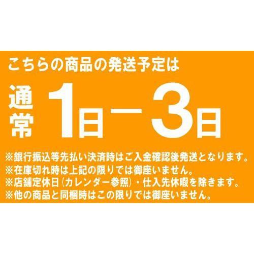 ポータブルトイレ 山崎産業 ポータブルトイレP型 カラー/ホワイト サービス品付 PT-P11(送料無料)|hstsuge|05