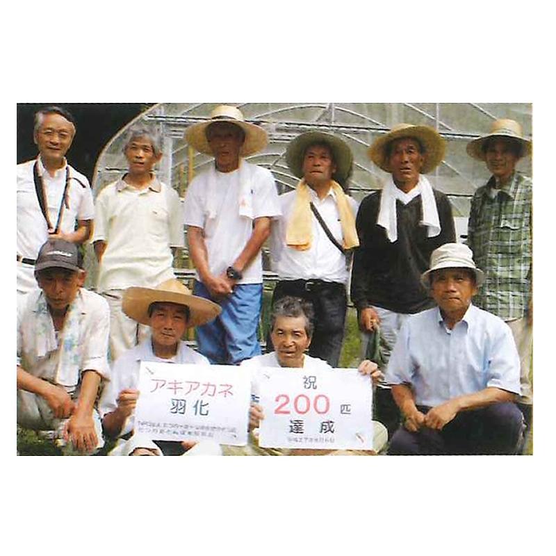 「たつの赤とんぼ米研究会」たつの赤とんぼ米 コシヒカリ(白米3 kg) hyogo-tokusanhin 09