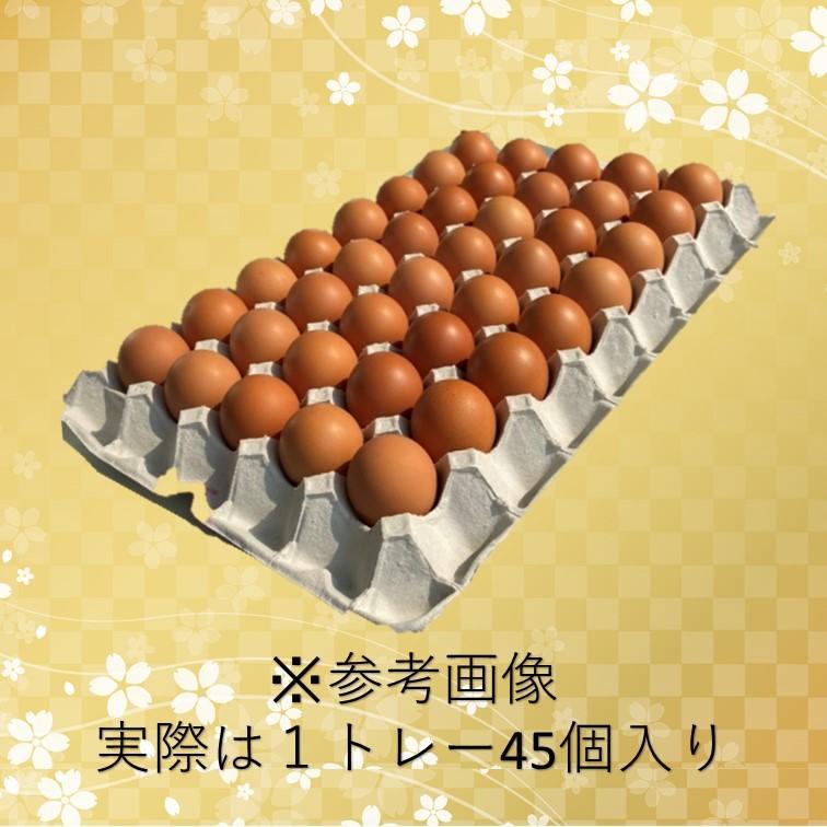 「藤橋商店」自社農場直送 藤橋家の夢美人Mサイズ10kg入り(約165個)卵かけご飯に最適|hyogo-tokusanhin|07
