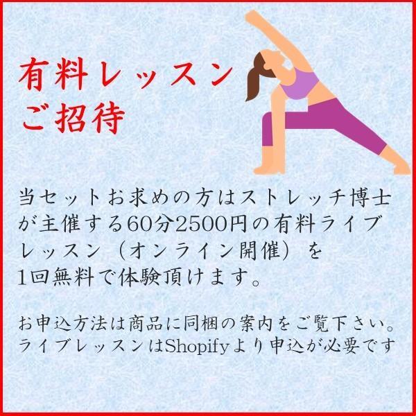 魔法の筋膜リリース パーフェクト5点セット 最速 柔軟 ストレッチ博士|hyperbody|09