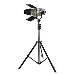 L25731 LPL スタジオ&ロケーションライト トロピカル TL-500 スタンド付 (L25731)