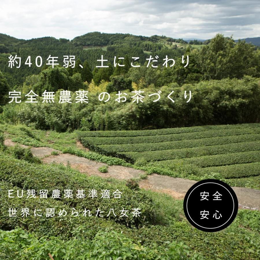 無農薬お茶【粉末50g】水と混ぜるだけですぐ飲める! 食べられる土で育った安心の茶葉の栄養をまるごといただけます i-crtshop 03