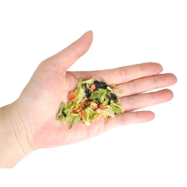 野菜ミックス 200g 送料無料 うさぎ 犬 モルモット チンチラ 草食動物 i-rabbit 03