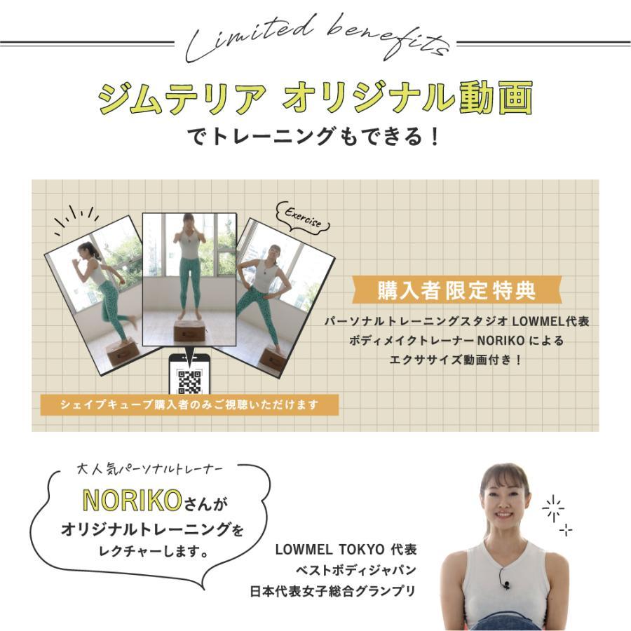 トランポリン お手軽 家庭用 室内用 子供 エクササイズ 組立て不要 手洗い可能 シェイプキューブ|ibiki-kenkyujyo|16