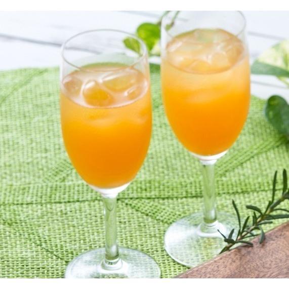 ジュース ジャム ギフト セット 詰め合わせ フルーツジュース びわ マンゴ− ビワ ibusukiya 02