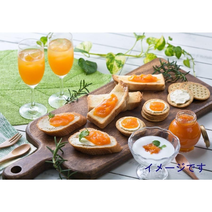 ジュース ジャム ギフト セット 詰め合わせ フルーツジュース びわ マンゴ− ビワ ibusukiya 03