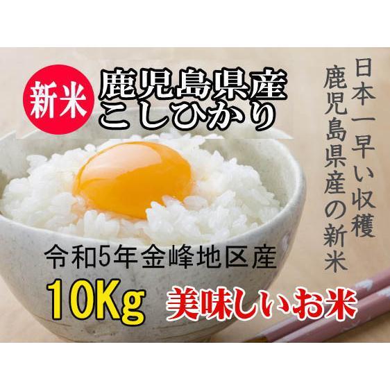新米 お米 米10kg コシヒカリ 10kg (5kg×2袋)2021 令和3年産 米 こしひかり 鹿児島 白米 10キロ 精米 ポイント消化|ibusukiya
