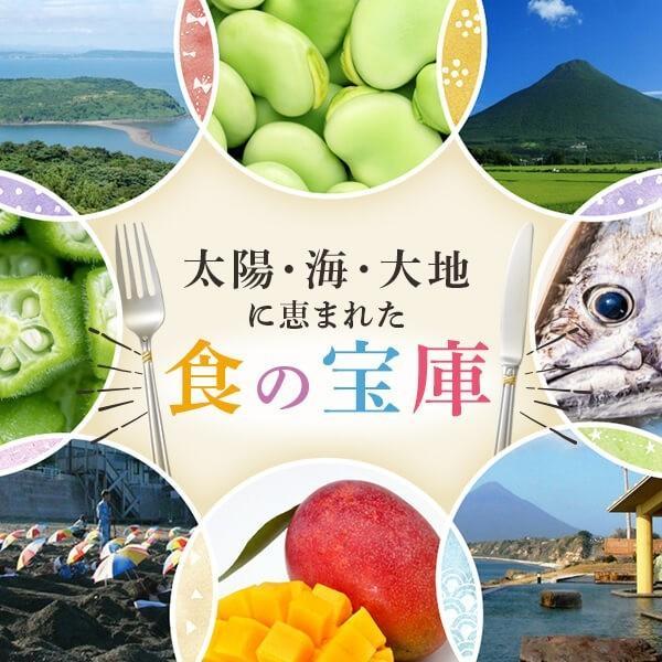 鰹のたたき かつお タタキ 3節 ゆずポン酢付|ibusukiya|03