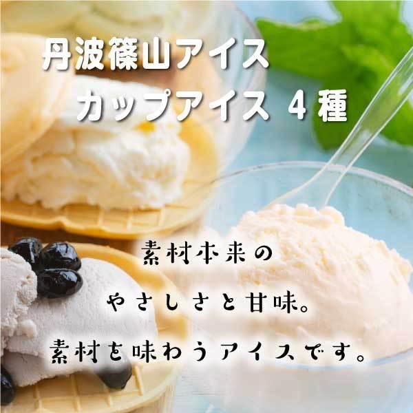 アイス ギフト ご当地 お取り寄せ 丹波篠山 黒豆 低温殺菌 牛乳:カップアイス12ケ ice-sasayama 08