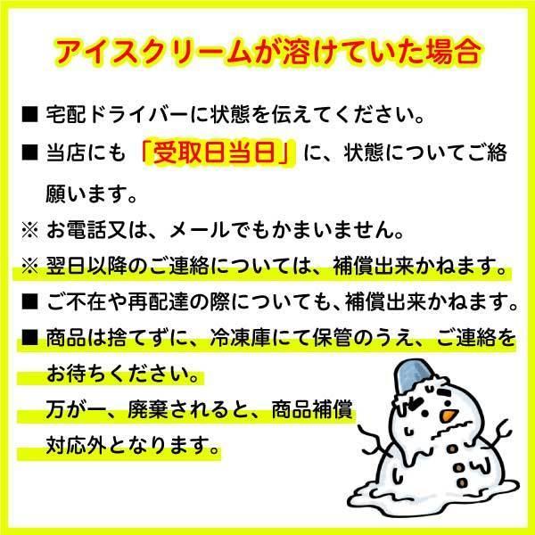 業務用 丹波篠山食品 牛乳アイスクリーム 2000ml×1個|ice-sasayama|03