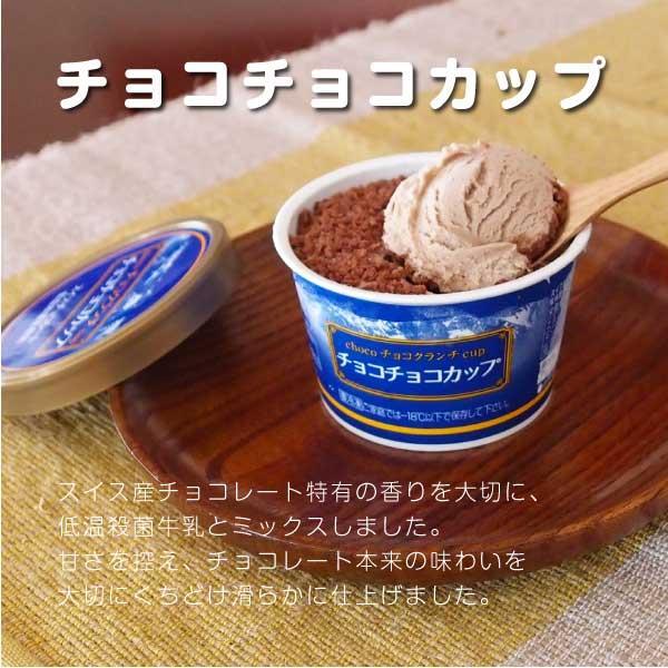 アイス ギフト ご当地 お取り寄せ 丹波篠山 黒豆 低温殺菌 牛乳:カップ&もなかセット|ice-sasayama|06