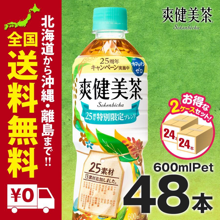 爽健美茶 PET 600ml 48本 まとめ買いでさらにお得セット iceselection