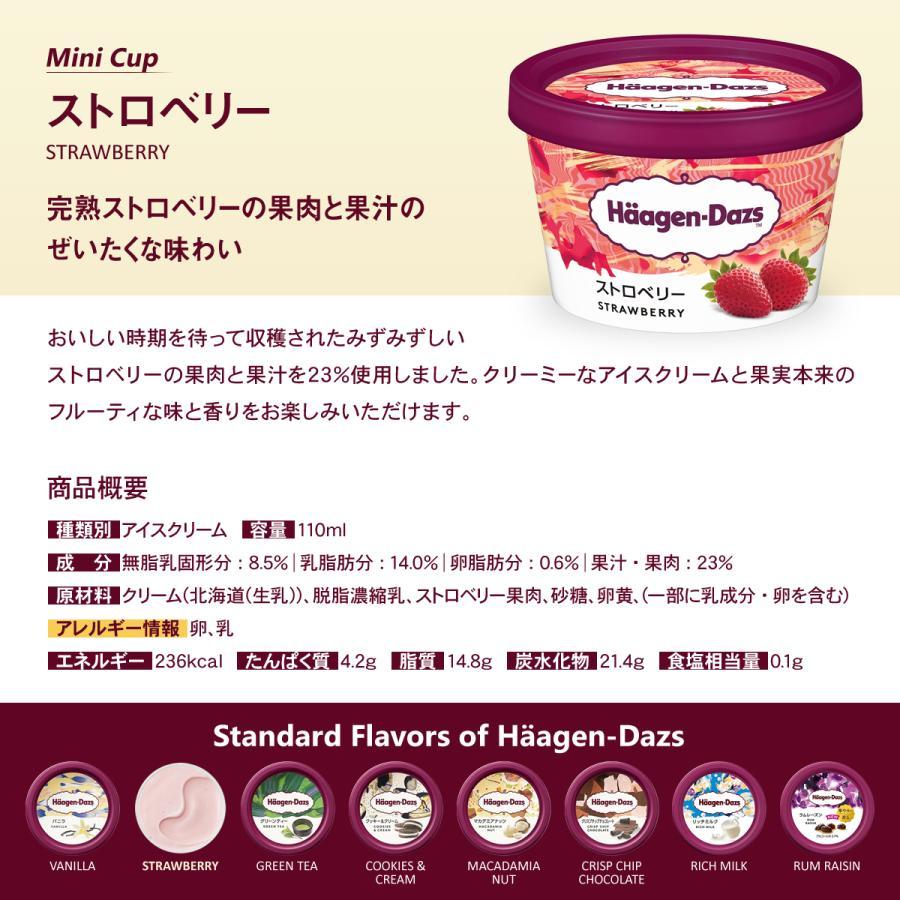 お誕生日  ホールケーキ(冷凍)ショコラルージュ 4号  ハーゲンダッツ バニラ・ストロベリーのミニカップ 2個 セット 送料無料 ギフト|iceselection|04