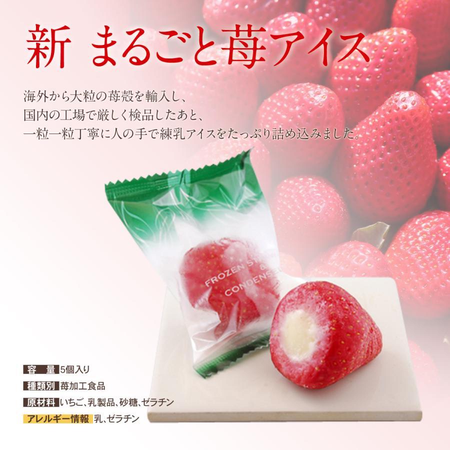 プレゼント  果実のしずく(リッチ果実バー・新まるごと苺アイス)  ダブル ギフト  グルメ セット|iceselection|07