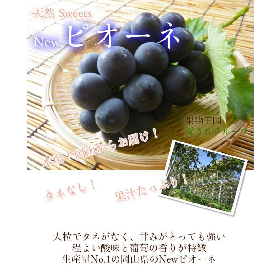 2021 ギフト 岡山県産 ピオーネ 赤秀品 2房400g×2房 贈答用 葡萄 ブドウ ぶどう 敬老の日 プレゼント 御礼 御祝 フルーツ|ichiba-koubou|03