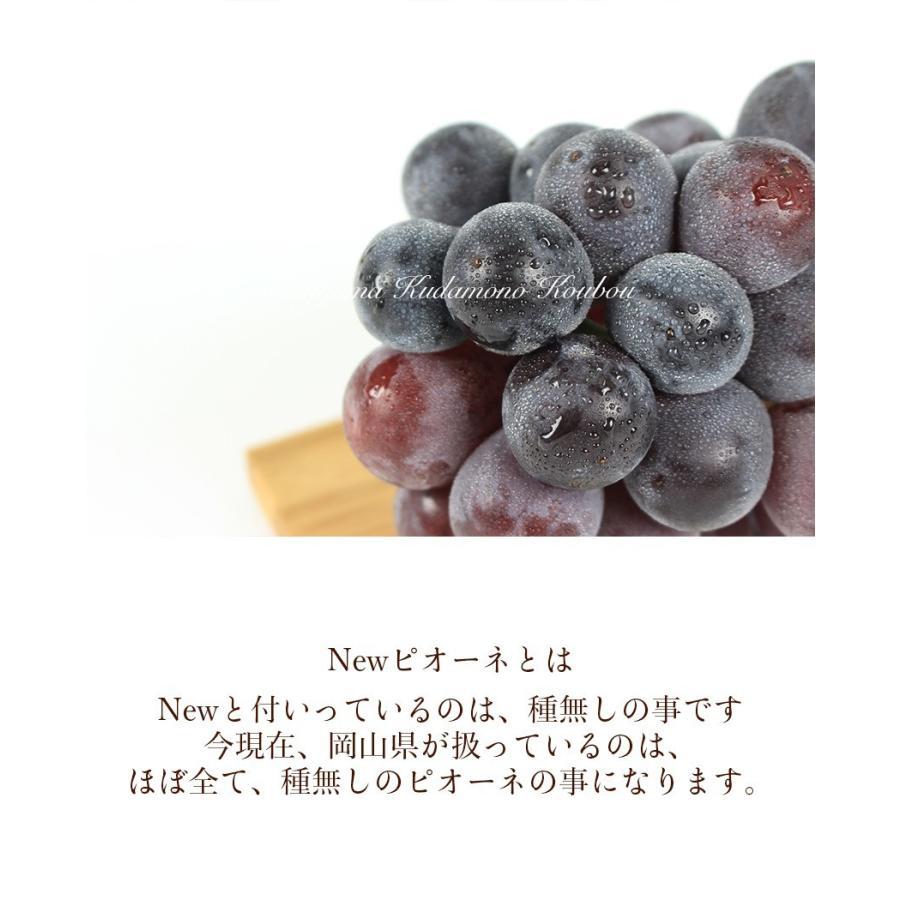 2021 ギフト 岡山県産 ピオーネ 赤秀品 2房400g×2房 贈答用 葡萄 ブドウ ぶどう 敬老の日 プレゼント 御礼 御祝 フルーツ|ichiba-koubou|04