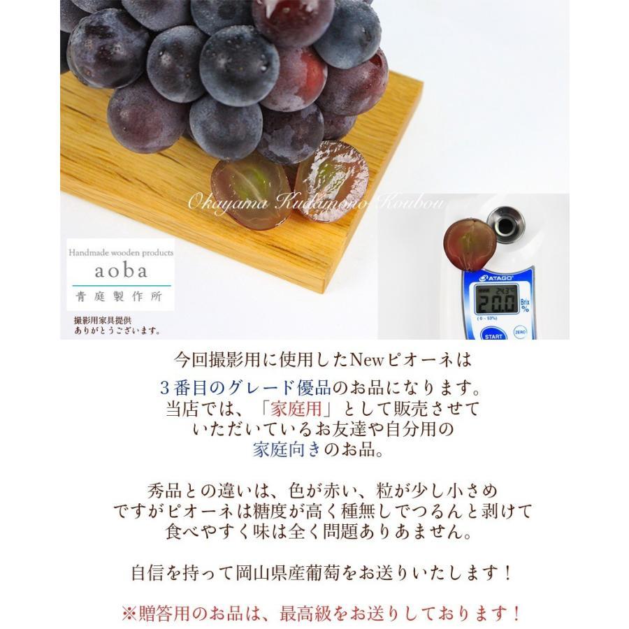 2021 ギフト 岡山県産 ピオーネ 赤秀品 2房400g×2房 贈答用 葡萄 ブドウ ぶどう 敬老の日 プレゼント 御礼 御祝 フルーツ|ichiba-koubou|05