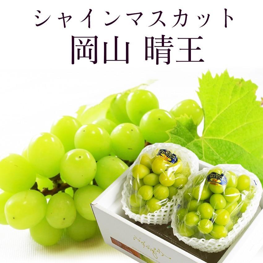 2021 ギフト 岡山県産 シャインマスカット 晴王 青秀品 2房400g×2 贈答用 葡萄 ブドウ ぶどう 御礼 御祝 フルーツ|ichiba-koubou