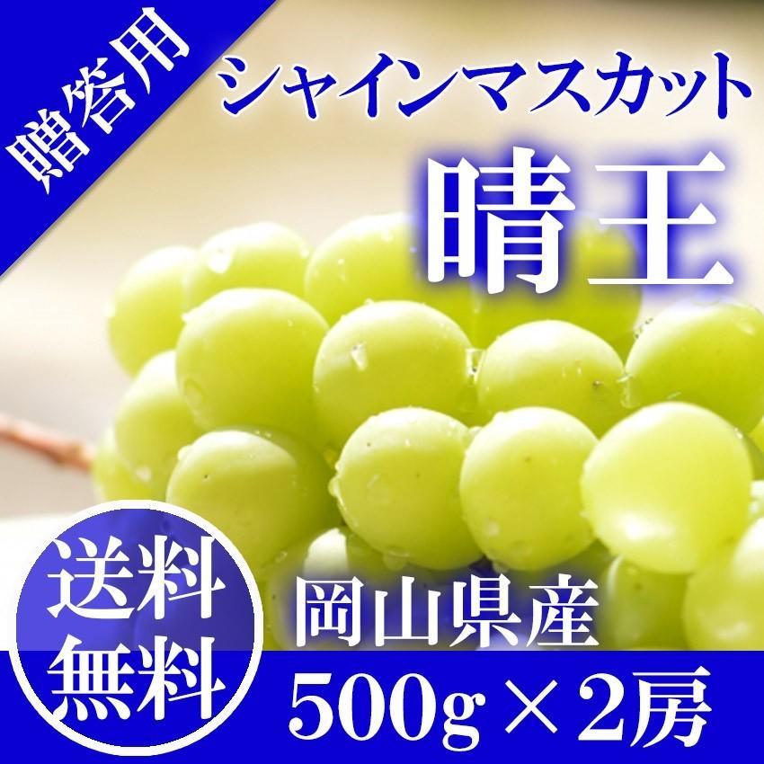 2021 ギフト 岡山県産 シャインマスカット 晴王 赤秀品 2房500g×2 贈答用 葡萄 ブドウ ぶどう 御礼 御祝 フルーツ|ichiba-koubou