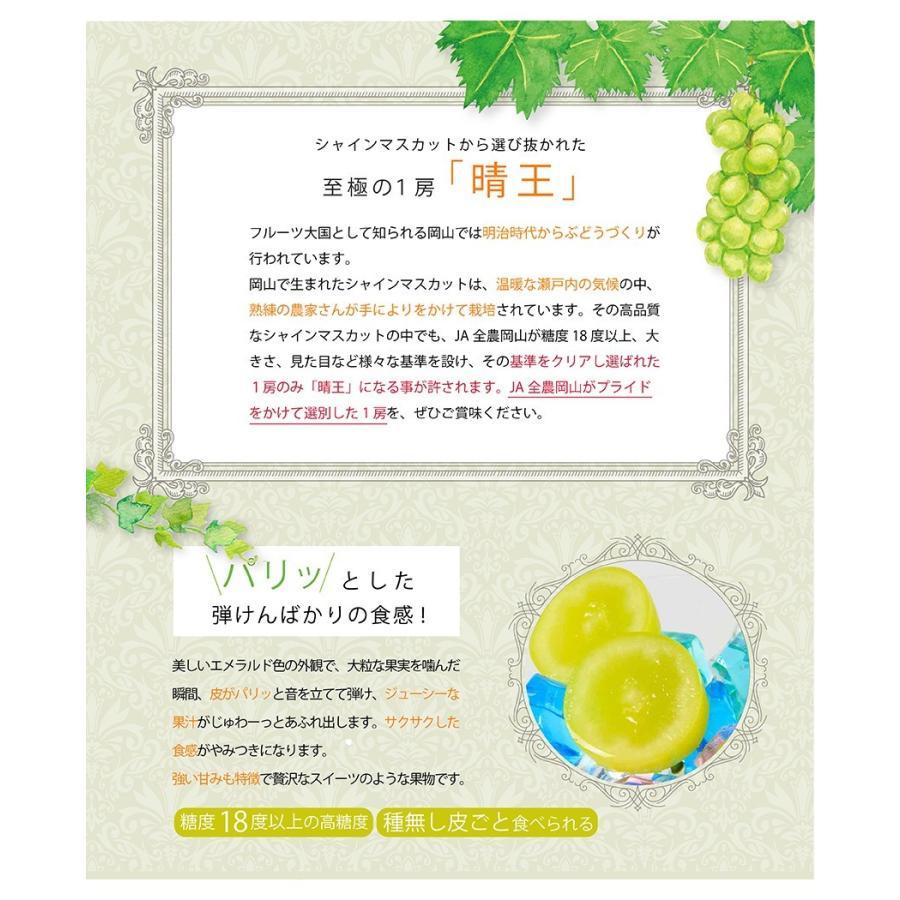 2021 ギフト 岡山県産 シャインマスカット 晴王 赤秀品 2房500g×2 贈答用 葡萄 ブドウ ぶどう 御礼 御祝 フルーツ|ichiba-koubou|03