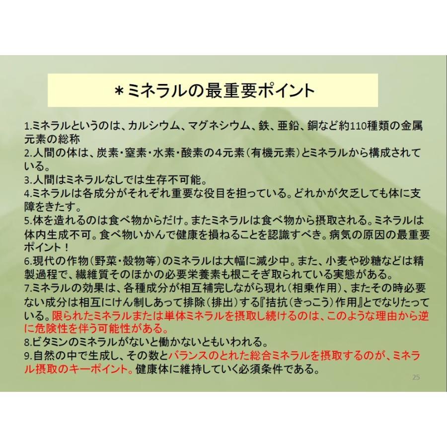 REALケイ素 Z-teraスーパーシリカエナジー ミネラル濃縮溶液 健康美容の基 デトックスサプリメント|ichigo-japan|08