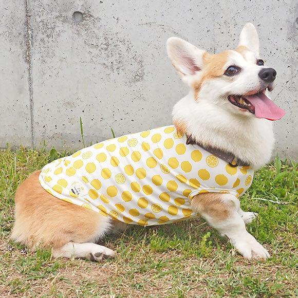 犬 服 セールiDog COOL Chill レモンタンク 接触冷感 メール便OK 夏 犬の洋服 犬服 ペット服 プードル チワワ ダックス|idog|18