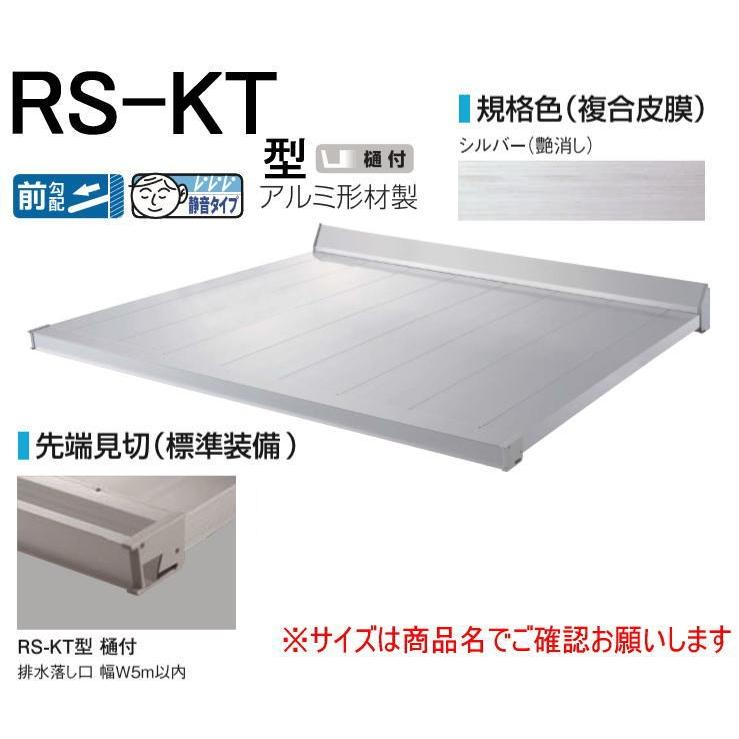 DAIKEN RSバイザー RS-KT型 D700×W1500 シルバー (ステー無)