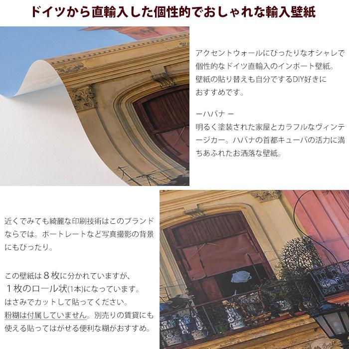 壁紙 おしゃれな輸入壁紙 クロス 不織布 フリース ドイツ製 Havanna