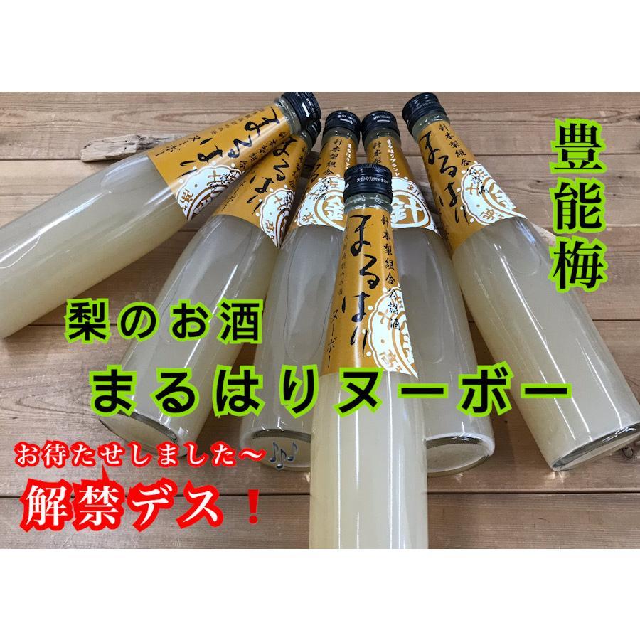リキュール 高知 豊能梅 まるはりヌーボー 500ml(新特) (父の日) igossou-sakaya