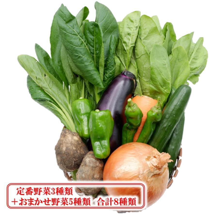 野菜詰め合わせ 野菜セット 野菜 超激安 国産 値下げ 詰め合わせ 野菜8種類 奈良