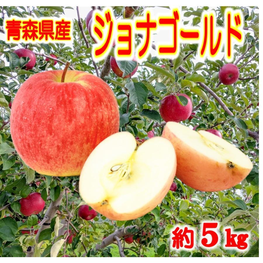 りんご 実物 ジョナゴールド 10kg 送料無料 甘い 《週末限定タイムセール》