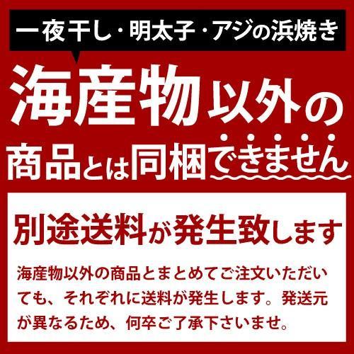 アジの浜焼き 100g 天然 小アジ おつまみ おやつ 魚 甘辛 酒の肴 ikkadanran 03