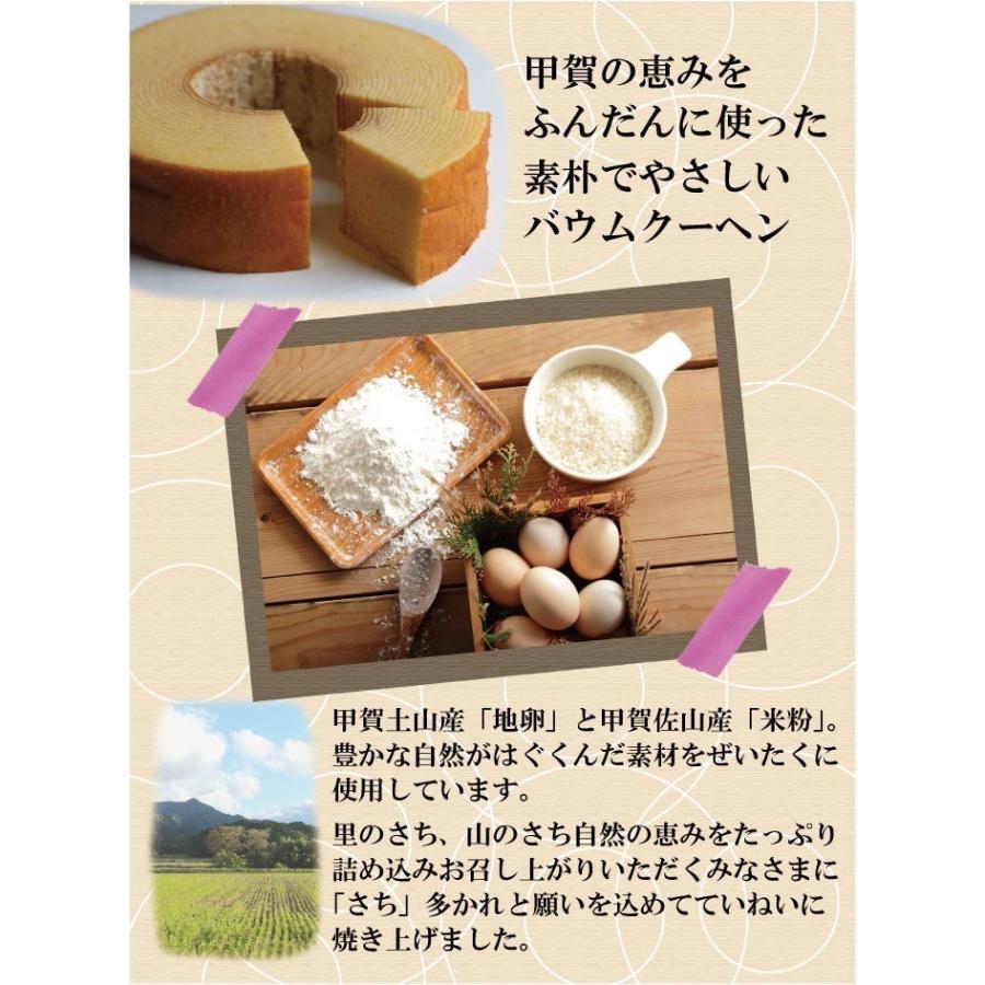 甲賀 バウムクーヘン ギフト バームクーヘン 美味しい しっとり 国産 厳選素材使用|ikkadanran|02
