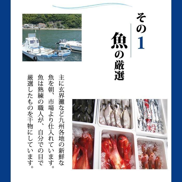 一夜干し 干物 おまかせ お歳暮 4500円セット 美味しい 海鮮 ギフト プレゼント 送料無料 ikkadanran 04