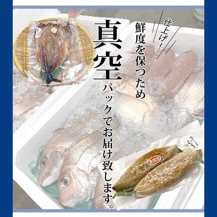 一夜干し 干物 おまかせ お歳暮 4500円セット 美味しい 海鮮 ギフト プレゼント 送料無料 ikkadanran 09