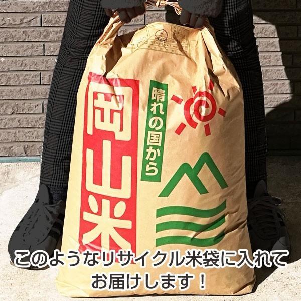木質ホワイトペレット20kg (約33L) 猫砂/トイレ砂用 【送料無料 ※北海道・沖縄・離島を除く】【同梱不可】※現在日時指定は承っておりません。 ikkyuhin-honpo 03