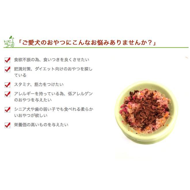 犬 おやつ 鹿 低脂肪 無添加 国産 丹波産 鹿チップ 50g イリオスマイル ポイント消化|iliosmile|04
