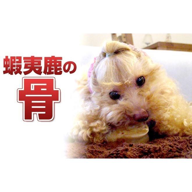 まとめ買い 犬 おやつ 骨 無添加 国産 北海道産蝦夷鹿の骨 げんこつあり なし混同×10個セット|iliosmile|03